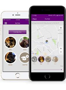 gps-tracking verliere nie wieder dein haustier. richte die begrenzung deinen zuhauses auf der karte ein und erhalte eine benachrichtigung, wenn hund oder katze den bereich verlässt. mit der app kannst du mehrere haustiere gleichzeitig tracken.
