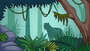 rainforest pic.jpg