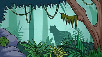 rainforest pic.jpg