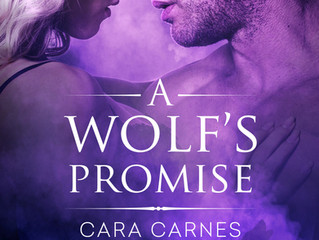 Cover Reveal - A Wolf's Promise