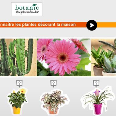 Savoir conseiller le client sur les plantes décorant la maison