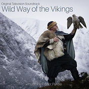 Wild Way of the Vikings cover.jpg