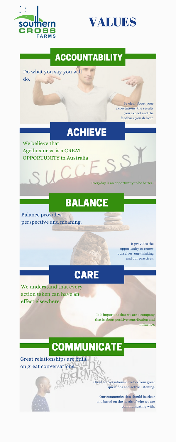 SCF Values Infographic.png