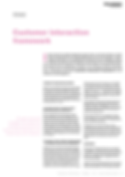wp-customer-interaction-framework.png
