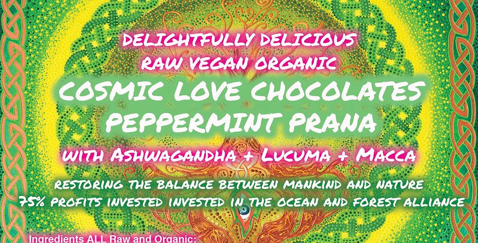 Peppermint Prana 6 Bars