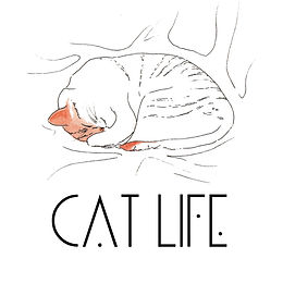 web_poster_cat_01.jpg