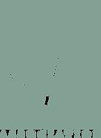 logo Sport et spécificités féminines