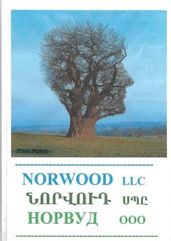 Scan Norwood LLC