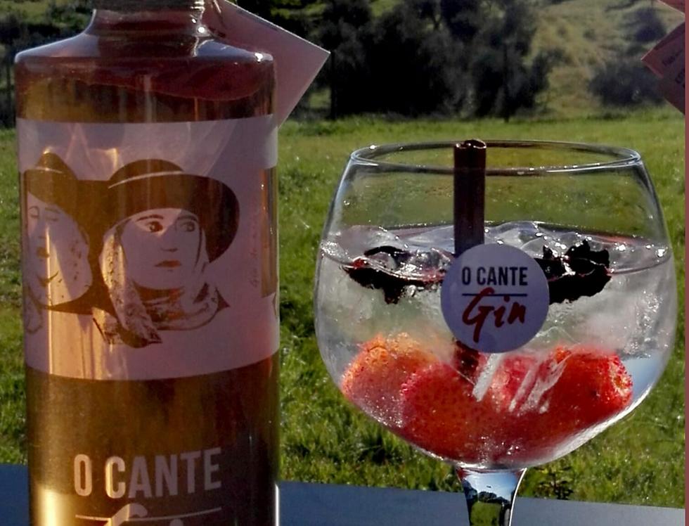 Gin de Medronho purpura  O'CANTE