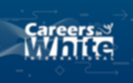 careers_in_white.png