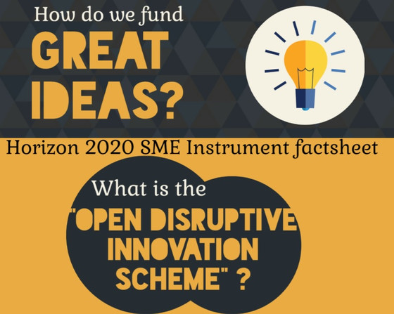 SME Instrument topic: Open Disruptive Innovation Scheme