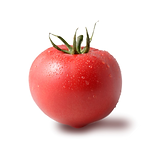 19野菜_0214044011[1].png