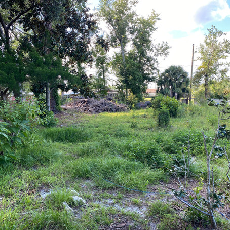 S & J Roll Off and Tractor Services Bush Hog and Debris Removal in Port St Joe, Fl