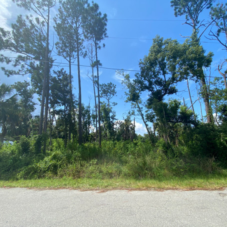 S & J Roll Off and Tractor Services Clearing an over grown lot in Port St. Joe, Florida