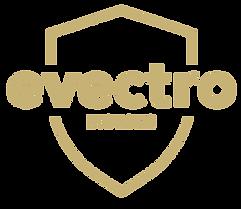 Evectro_BSG_logos copy 2.png