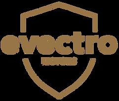 Evectro_BSG_logos copy.png