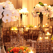 #16 Rental Tall Glass Vase And Orchid Centrepiece