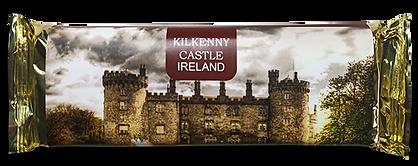 kilkenny-castle1.png