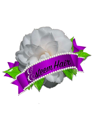 Esteem Hair Extensions