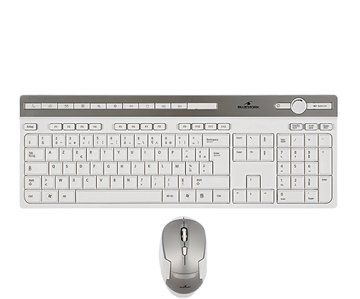 PACK CLAVIER/SOURIS BLUESTORK WIRELESS PACK EASY II-N BLANC/SILVER