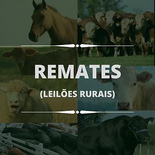 Remates Ucha Leilões