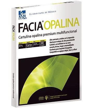 CARTULINA OPALINA BLANCA CARTA 225 GR