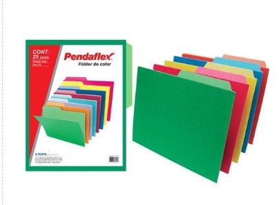 Folder color intenso emplayado c/25