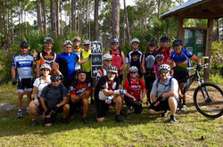 palmetto group.jpg