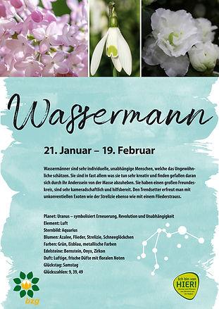 RZ_Sternzeichenplakate_A2_Wassermann.jpg