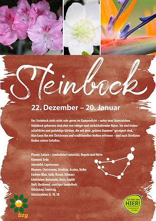 Sternzeichenplakat_Steinbock.jpg