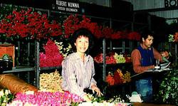 Rosenverkauf der Gärtnerei Kunna