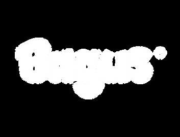 logo bagus.png