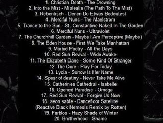 Top 20 Januars 2014 Radio Dunkle Welle
