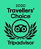 TA travellers choice logo 2020.jpg