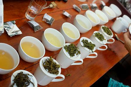 tea tasting.jpg