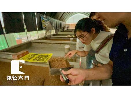 【產地到長輩的餐桌 11:今日上哪去?合作小農的魚菜共生農場現場報】