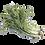 Thumbnail: 嘉義縣中埔鄉無毒水耕蔬菜:京都水菜 Japanese Mizuna