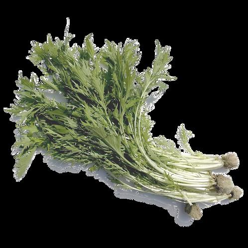 嘉義縣中埔鄉無毒水耕蔬菜:京都水菜 Japanese Mizuna