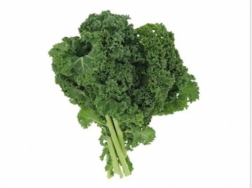 嘉義縣中埔鄉無毒水耕蔬菜:羽衣甘藍 Kale