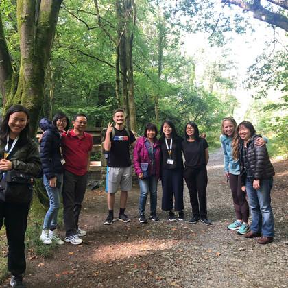 a-walk-in-the-woods-1jpg