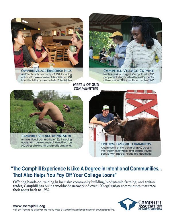 Camphill Ad Augist 2018.jpg