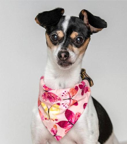 Pink Butterflies Over The Collar Dog Bandana
