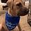 "Thumbnail: ""I'm A Rescue"" Over-The-Collar Dog Bandana"