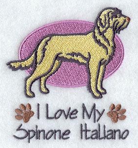 Image for Spinone Italiano