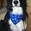 Dog wearing I'm A Rescue Blue Embroidered Over The Collar Dog Bandanna