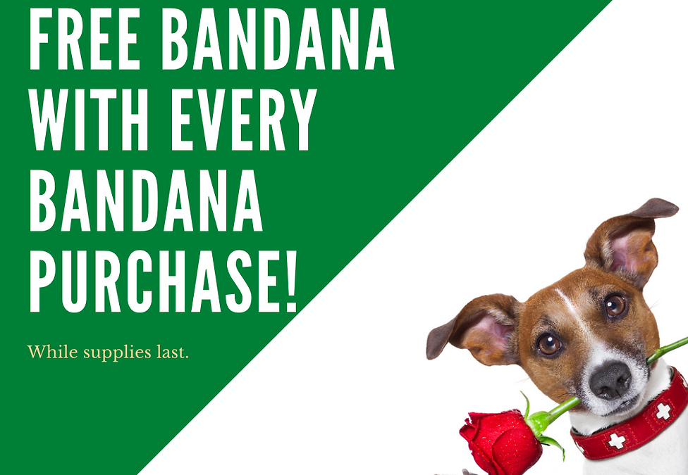 FREE BANDANA WITH EVERY BANDANA PURCHASE