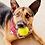 Thumbnail: Red Paisley - Over The Collar Dog Bandana