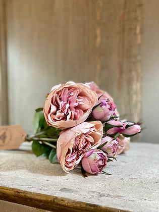 Blush Rose Bundle