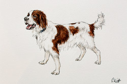 Rua's Watercolour Portrait