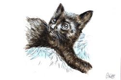 Bella's Watercolour Portrait